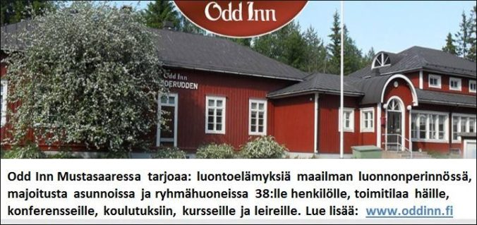 Odd Inn Mustasaari